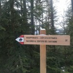 Dal sentiero 20 si scende al Villscheiderhof