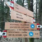 indicazioni dei sentieri