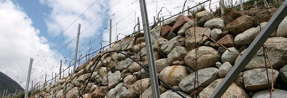 stoanmauer